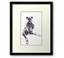 puppert Framed Print
