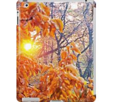 Shining Through The Rust iPad Case/Skin