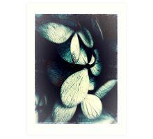 Darkness Disturbed Art Print