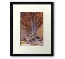 Valley of Fire #3 Framed Print