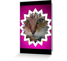 Cat in star Greeting Card