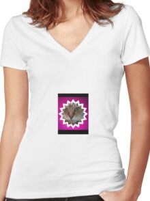 Cat in star Women's Fitted V-Neck T-Shirt