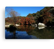 Guadalupe River State Park 2 Canvas Print