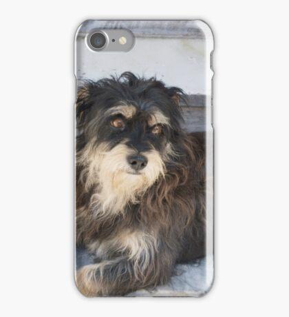 Scruffy Greek Dog in Santorini iPhone Case/Skin