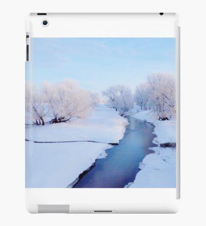 Pretty Winter Stream iPad Case/Skin
