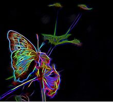 Neon Butterfly by Judy Vincent