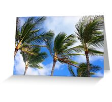 Cool Waving Palm Tree Paradise Greeting Card