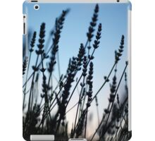 Twilight Blue iPad Case/Skin