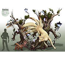 Ninetales Photographic Print