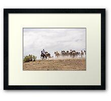 Bringing in the horses Framed Print