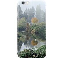 Painted Slough iPhone Case/Skin