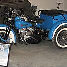 Harley Servicar by Monnie Ryan