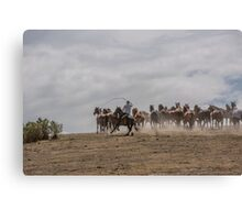 Bringing up the horses Canvas Print