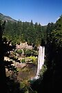 Brandywine Falls, Whistler, British Columbia by Allen Lucas
