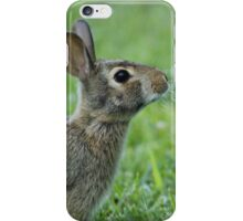 Baby Bunny iPhone Case/Skin
