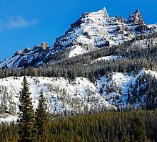 Snow Capped Pinnacles by Nicholas Blackwell