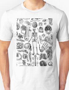 Human Anatomy White Print T-Shirt