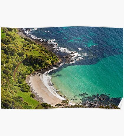 Seagulls Eye View - Cove below Table Cape Poster