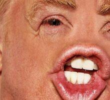 Funny Donald Trump Meme Sticker