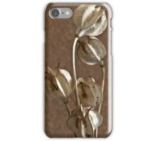 Seed Pods Macro iPhone Case/Skin