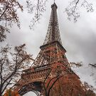 Autumn in Paris by Kim Andelkovic