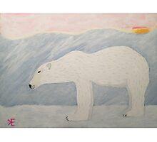Polar Bear on Ice Photographic Print