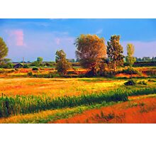 Out Field Photographic Print