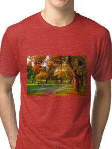 Park Forest Tri-blend T-Shirt