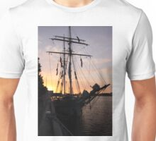 One and All at Sunset Unisex T-Shirt