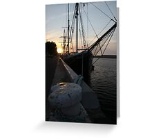 Falie at Sunset Greeting Card