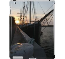 Falie at Sunset iPad Case/Skin