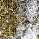 Yellow Water Surge III by Stephen Mitchell