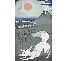 Fennec Tarot Card Photographic Print