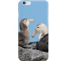 Southern Giant Petrels ~ A rocky nest  iPhone Case/Skin