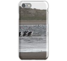 The Pelican Brief iPhone Case/Skin