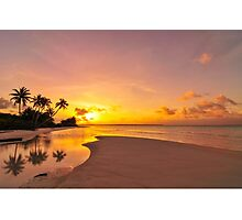 Palm Reflections at Kite Beach Photographic Print