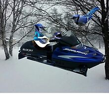 BLUE JAY ON ON SKI-DOO-- PLAYS GUITAR SERENADES MATE --VARIOUS FUN BLUE JAYS APPAREL... by ✿✿ Bonita ✿✿ ђєℓℓσ