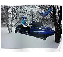 BLUE JAY ON ON SKI-DOO-- PLAYS GUITAR SERENADES MATE --VARIOUS FUN BLUE JAYS APPAREL... Poster