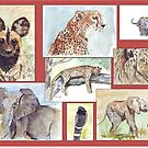 South African Wildlife collection by Maree Clarkson