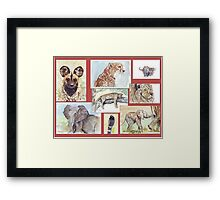 South African Wildlife collection Framed Print