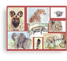 South African Wildlife collection Canvas Print
