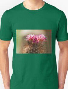 succulent plant in the garden Unisex T-Shirt