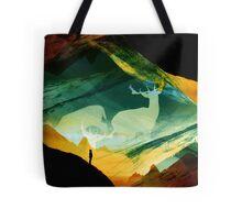 Native Dream Catchers Tote Bag