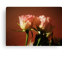 Twin pink and white roses Canvas Print