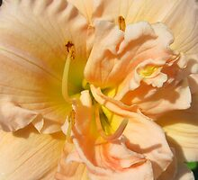 Faithful Bloomer by AuntDot