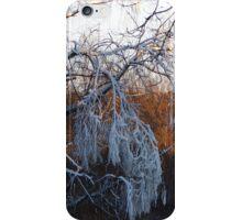 January riverside iPhone Case/Skin