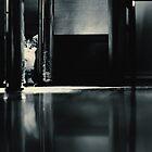 Hide and seek by monicamarcov