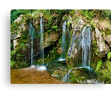 Blarney Waterfall Canvas Print