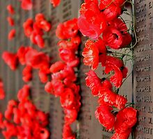 Lest We Forget by Stephen Mitchell