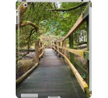 Blarney Boardwalk iPad Case/Skin